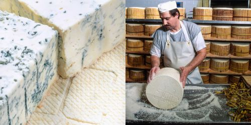 b-app-italian-cooking_Gorgonzola-cheese-with-blue-mold